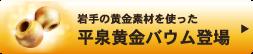 平泉黄金バウム登場